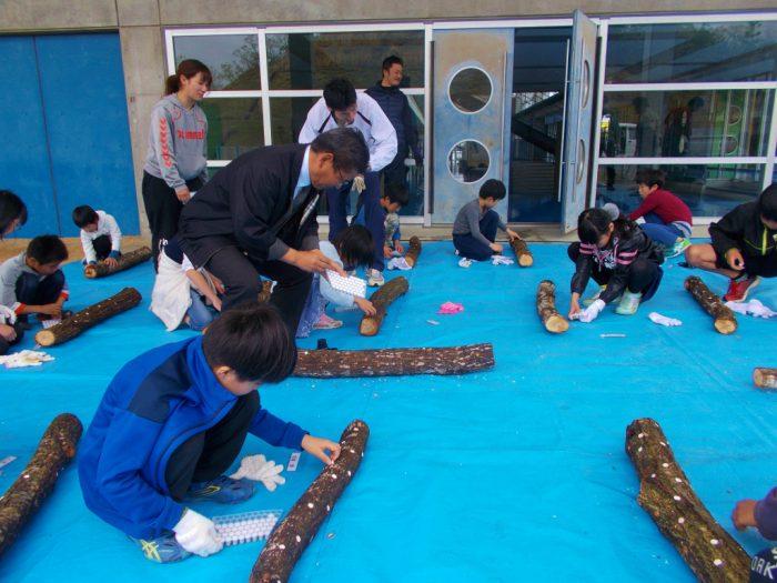 原木椎茸の植菌体験教室