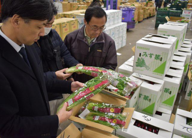 自動包装機に対応した包装容器で京のブランド産品「京みず菜」を試験出荷