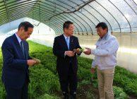 吉川農林水産大臣が府内農業視察